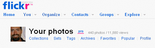 Flickr Pro!
