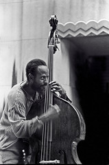 Percy Heath - pizzicato (Tom Marcello) Tags: photography bass jazz jazzmusicians percyheath jazzplayers jazzphotos jazzphotography heathbrothers jazzartists jazzphotographs tommarcello