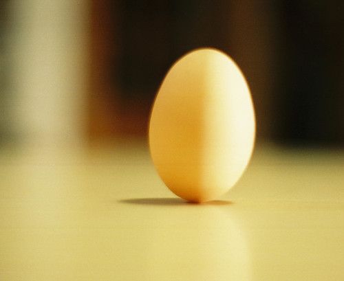 one egg standing por Circles of Grace.