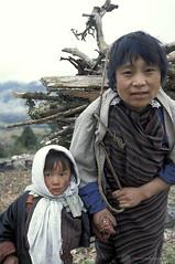 Woman and child. Woman carries wood.  Bhutan (World Bank Photo Collection) Tags: poverty portrait asia bhutan worldbank southasia