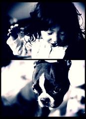 love (sakiiiivii) Tags: dog  iphone
