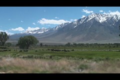 Round Valley and Mt Tom (13652) (danws) Tags: california bishop owensvalley mttom easternsierra roundvalley sherwingrade
