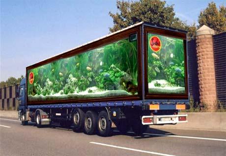 camiones 6