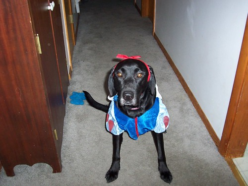 Brookie as snow white