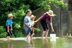 Wading (Photographic Poetry) Tags: family fish boys water girl rural children play farm amish pa wade lancastercounty bucolic minnows