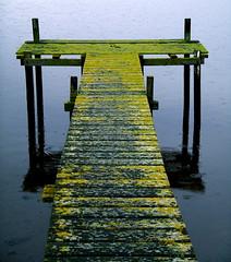 J E T T Y (Frankie Boy1) Tags: sea england reflection water beautiful rain digital frank jetty estuary dorset lichen 07 oldjetty artphoto wallington niceshape