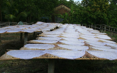 Rice paper wrappers drying on mats