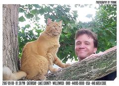 Neighborhood security program installed (Bernie in the 44134 of Parma Ohio) Tags: ohio red orange cats pets tree nature gold felines fuzz lakecounty thefuzz companions gingercats willowick petsandowners cc100 geotaggedohio 440950000 lakecountywilliowickohio ohiolakecountywillowick 44095 ownersandpets