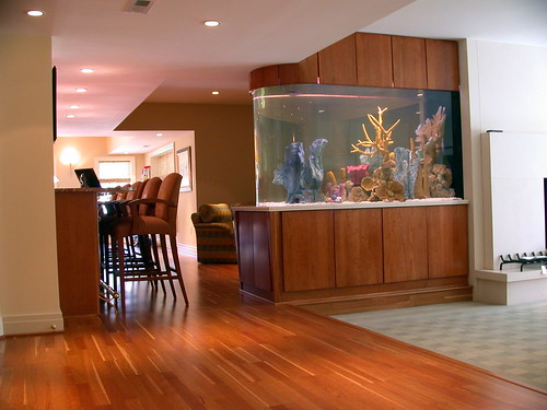 fish tank room divider Reef Central Online Community