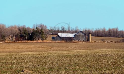 Orillia - Oro Farm