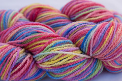 Eden on Cestari Super Fine Merino Wool *Seconds/Bright version* - 8 oz. (...a time to dye)