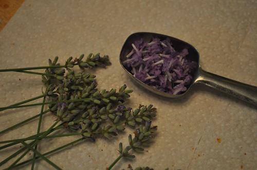 lavendar blooms