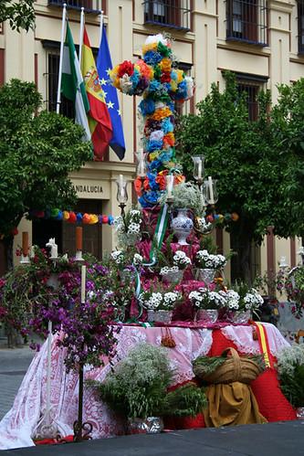 Dianas--Spain-2010-558