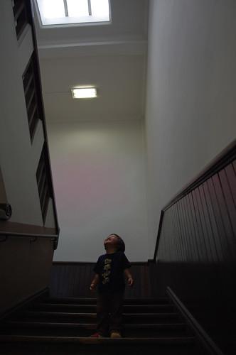階段だいすき