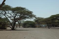 144 - Arriving In Kalacha (FO Travel) Tags: kenya nairobi nakuru karama lewa baringo naivasha turkana gabra chalbi suguta nariokotome kalacha loyangalani logipi