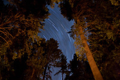 Camping Star Trails (Phil Peck) Tags: statepark longexposure camping trees sky usa nature night outdoors interestingness skies id idaho explore campfire startrails roundlake cocolalla cocollala