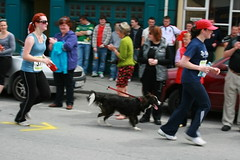 Four Legs....Better (A Terrible Picture Of Things) Tags: ireland race clare run 10k spanishpoint miltownmalbay