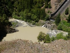 Mud Creek silting the McCloud River below the dam