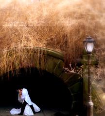 Love in Central Park (fede_gen88) Tags: park nyc newyorkcity bridge wedding two usa ny newyork love america groom bride us couple unitedstates streetlamp centralpark manhattan marriage spouses husband wife bridegroom abigfave 15challengeswinner