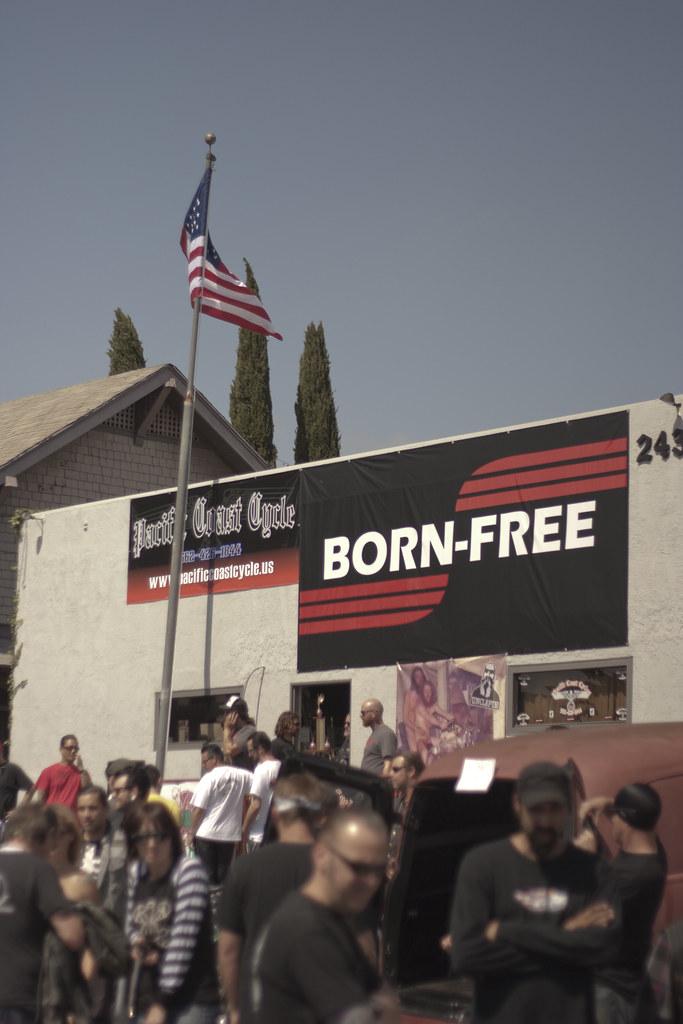 Born Free 2010
