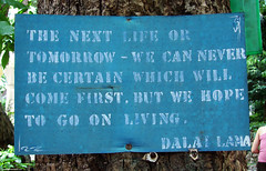 The next life or tomorrow - we can never be certain which will come first. But we hope to go on living.