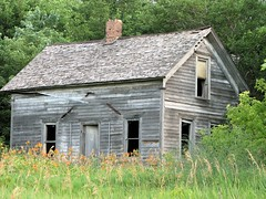 Alone in Lillies (McMorr) Tags: old family house abandoned home rural farm country neglected eerie spooky forgotten lilly weathered disused homestead lillies discarded forsaken deserted abused fallingapart creativenonfiction mcmorr