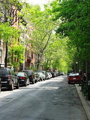 Street in Green Village (Natasja ❤) Tags: street new york usa house ny newyork tree america canon thevillage village greenwich g3 greenwichvillage thebigapple