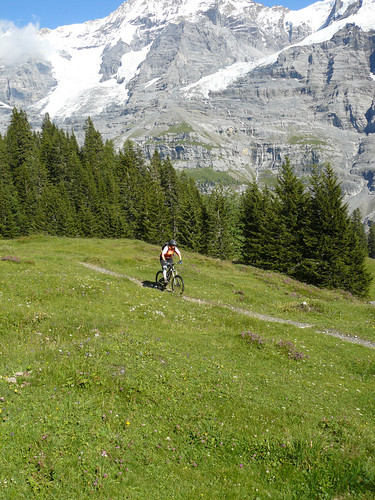 Alpine Singletrack below Kleiner Scheidegg
