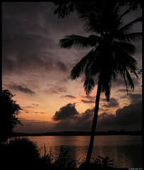 Tropical Sunrise - by Balaji Dutt