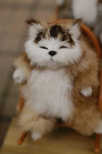 拍手會搖搖的貓