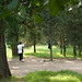 taiji at a park