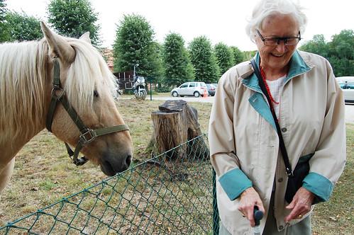 Farmor och häst