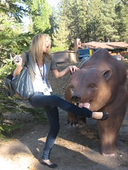 Big Bear Attacks Kim Shaw