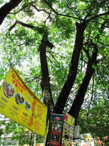 IMG_1689 Hawkers Under the Big Trees , Ipoh.  怡保大树脚