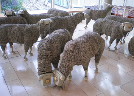 02_sheep02