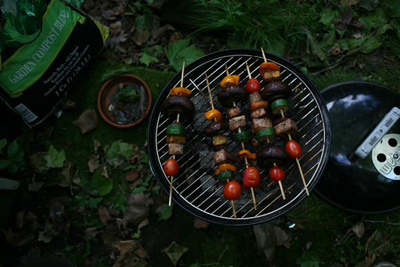 kabob on the grill
