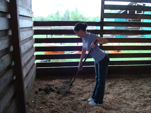 Cleaning the Stall