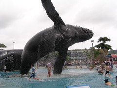 A whale of a statue (shimmertje) Tags: bird water pool statue museum children grey aquarium marine mark african taiwan tinkerbell parrot kiddy entertainment national whale congo kc biology shanlung kenting kending pingdong pingtung 703