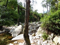 Arrivée au ruisseau de Peralzone