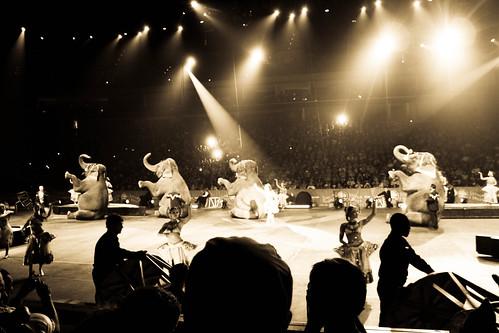 Circus-16