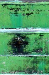 Green Steps - Escalera Verde (MY PINK SOAPBOX) Tags: old urban abstract verde green wall stairs pared nikon florida miami decay urbandecay steps vivid vert escalera rothko urbana weathered urbano abstracto astratto viejo patina escalones urbanabstract chippingpaint wynwood naturalabstract abstractphotography decaimientourbano decaimiento abstraite fotografiaabstracta mypinksoapbox anahidecanio unzippedgallery