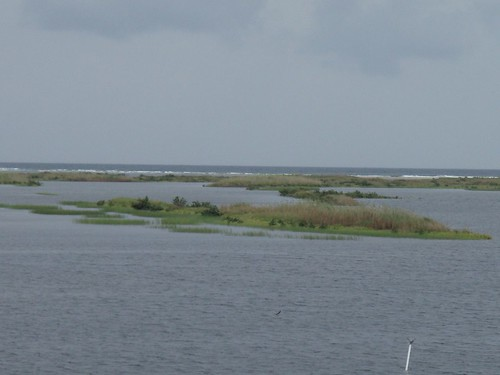 marsh to the sea --Chandeleur Islands looking east
