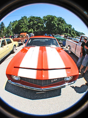 (cw3283) Tags: orange white cars antique stripes headlights grill fisheye vehicles fender hood fin z28 antiquecars antiquecarshow highlightandshadow boothscorner