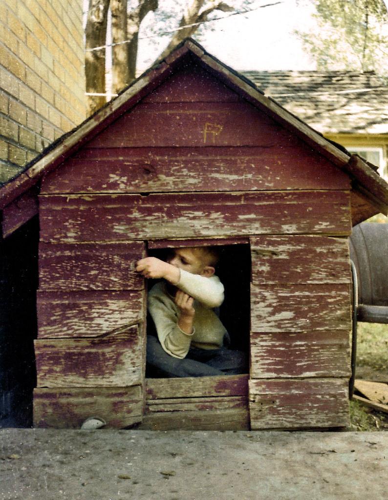 Dog House Heater Homemade Dog House 60w Tubular Heater