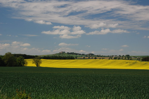 Borders landscape, looking to Hume Castle in the distance