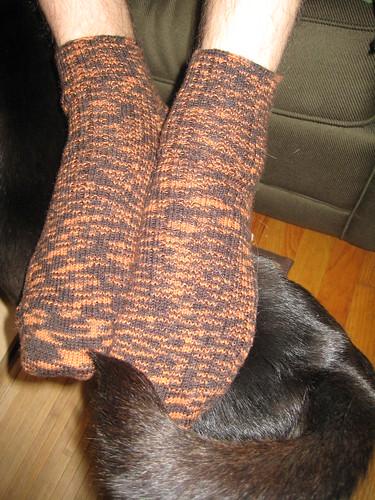Dave's orange socks