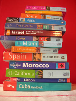 travel bug books