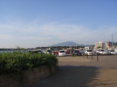 寺泊港 (5)