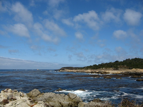 Point Lobos, in a nutshell