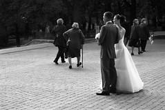 Wedding shoot (hannanik) Tags: wedding pecs pose groom bride couple hungary junglearctic